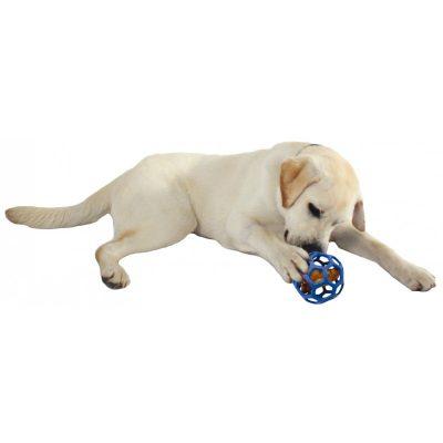 Hond snack gatenbalen blauw holler